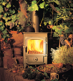 Log Burner/Multi Fuel